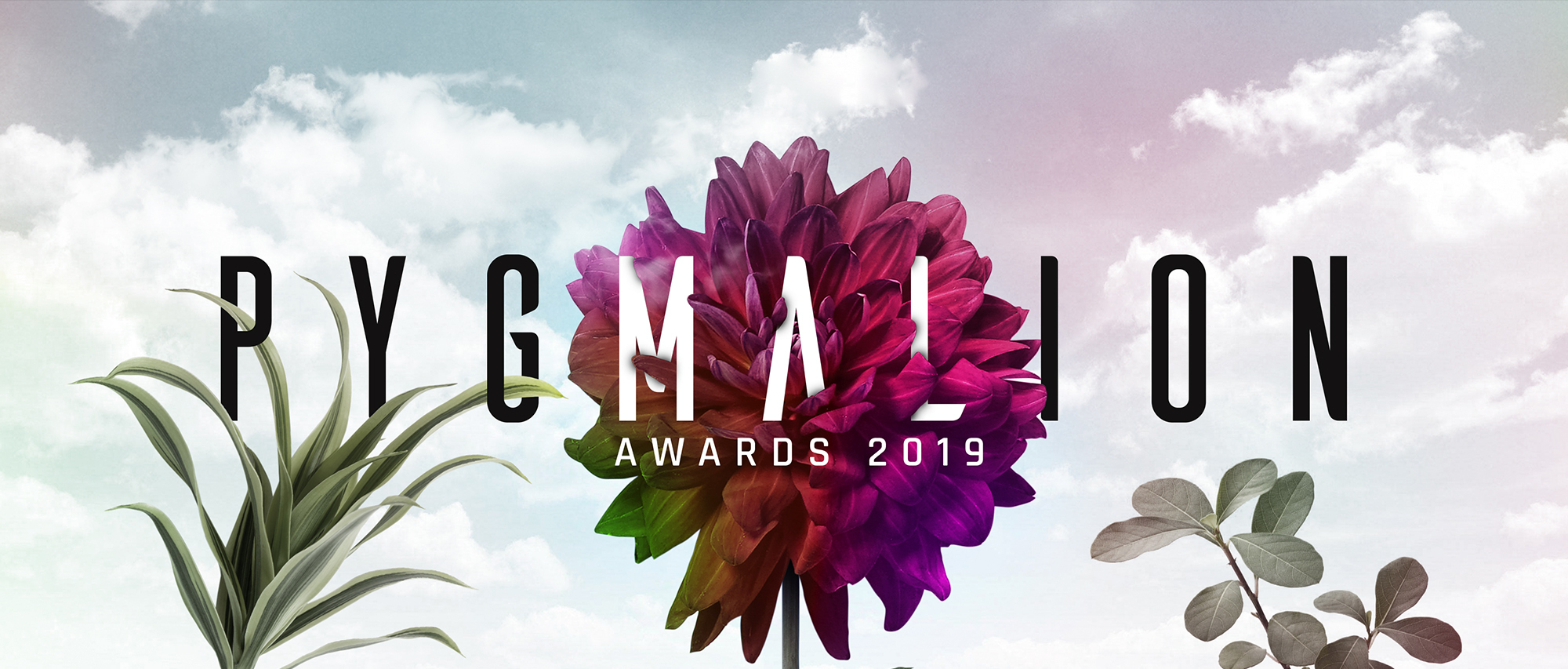 PYGMALION 2019 Call for Entries