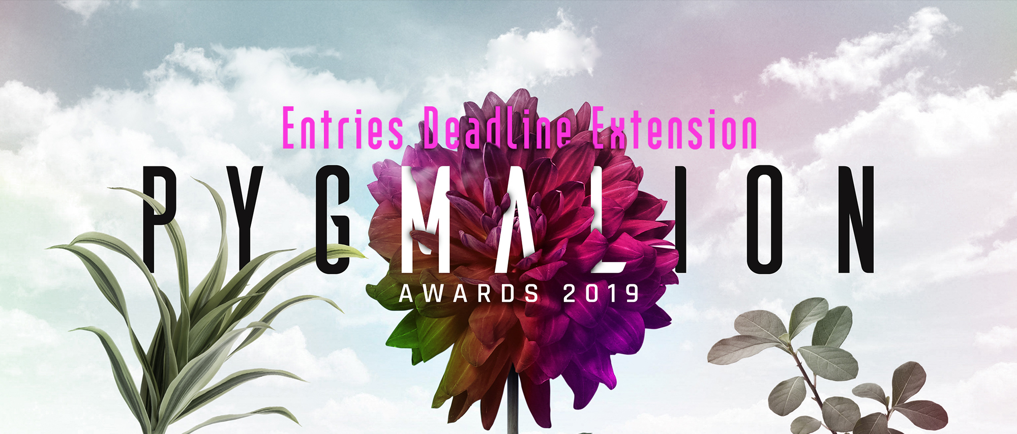 Call For Entries Extension